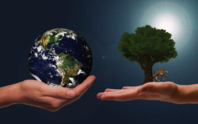 Nachhaltiges Engagement – Ein Teil unserer Unternehmenskultur